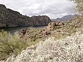 Mt. Pinter Base Loop, Tonto National Forest, Butcher Jones Trail, Fort McDowell, AZ 85264, USA - panoramio (94).jpg