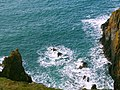 Mull of Galloway - panoramio (9).jpg