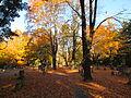 Munroe Cemetery, October 2013, Lexington MA.jpg