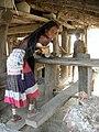 Népal rana tharu2057a.jpg