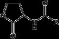 N-Acyl Homoserine Lactone.png