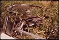NATURE RECLAIMS ABANDONED CAR ALONG THE MINEOLA HIGHWAY LEADING INTO TYLER IN NORTH-EASTERN TEXAS - NARA - 547747.jpg