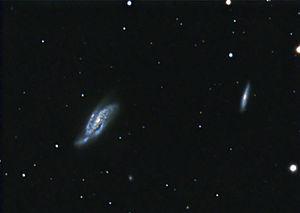 NGC 4088 - Amateur image of NGC 4088, left, and companion NGC 4085, right.