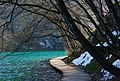 NP06 Plitvice Lakes.jpg