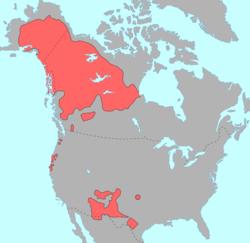 """""""Mappa del Nord America che mostra in rosso la distribuzione pre-contatto di Lingue Na-Dene"""""""