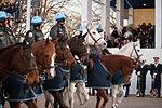 National Guardsmen support 57th Presidential Inaugural Parade 130121-Z-QU230-231.jpg