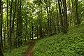 Nature reserve Žižkův vrch in summer 2012 (6).JPG