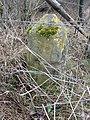 Neu-Belgisch (Preußisch)-Luxemburgischer Grenzstein Nr. 63 (4).jpg