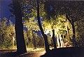 Neusiedler Nacht - panoramio.jpg