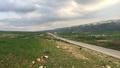 Newroz Kurdistan.png