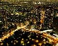 Night in Tokyo - panoramio.jpg