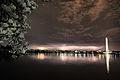 Nightime-lighting-washington-dc1 - Virginia - ForestWander.jpg