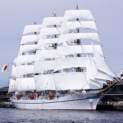 meaning of barque