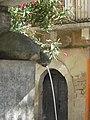Noicattaro - Fontana delle testuggini.JPG