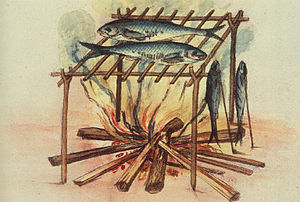 Cured fish - Equipment for curing fish used by the North Carolina Algonquins, 1585