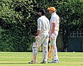 Nuthurst CC v. The Royal Challengers CC at Mannings Heath, West Sussex, England 29.jpg