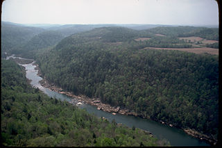 Obed River river in the United States of America