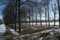 Oberschleißheim Neues Schloss Schlosspark 091.jpg