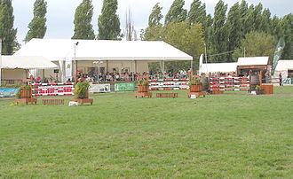 Horse jumping obstacles - A triple combination.