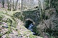 Old Waterwheel, near Lodge Park - geograph.org.uk - 10776.jpg