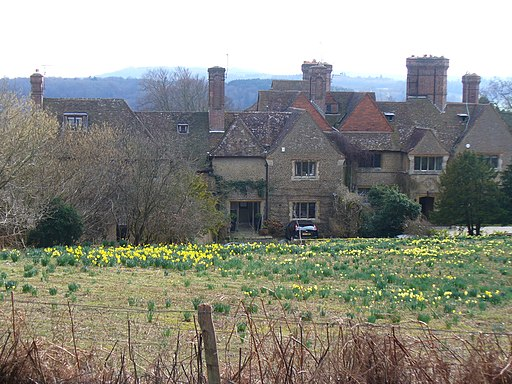 On Chinthurst Hill - geograph.org.uk - 1765846