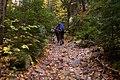 On the trail (1584756140).jpg