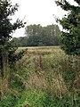 Open field gate - geograph.org.uk - 1004529.jpg