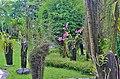 Orchid Garden Bali Indonesia - panoramio (15).jpg