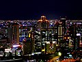 Osaka - Night View.jpg