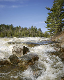 Freshet spring thaw resulting from snow and ice melt in rivers