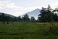 Ozegahara 31.jpg