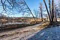 Pörtschach Halbinselpromenade Uferzone mit Schilfrohr 16032018 2701.jpg