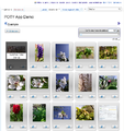 POTY-App 2012-05-22 v.0.0.6.0 gallery rillke.png