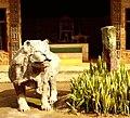 Palais du Fon, Kumbo.jpg