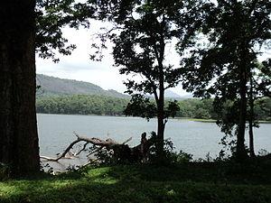 Parambikulam Dam - Parambikkulam Reservoir