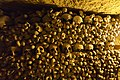 Paris catacombs (34737695816).jpg