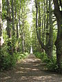 Park Dranske-Lancken - Mittelachse 4.JPG