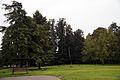 Park Matczyn.jpg