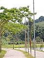 Parque Municipal Luiz Latorre também conhecido como Parque da Juventude. - panoramio.jpg