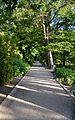 Passeig, jardí botànic de València.JPG
