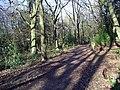 Path by Moorgreen reservoir - geograph.org.uk - 312003.jpg
