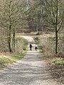 Path over Stub Beck - geograph.org.uk - 154108.jpg