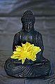Peaceful Meditation free creative commons (4548016109).jpg