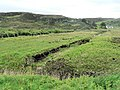 Peat digs - geograph.org.uk - 494653.jpg