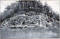 Pegmatite Dikes Orange Grove PlateXXVIII Keyes 1895.jpg