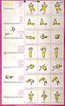 Physical exercises recommended for Tuesday (recto) and Thurs Wellcome L0023429.jpg