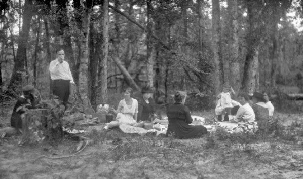 Picnic in a wooded area