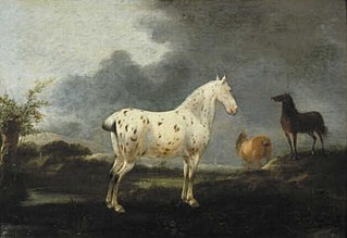 Landscape with a dapple grey horse