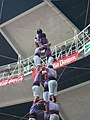 Plaça de Braus de Tarragona - Concurs 2012 P1410231.jpg