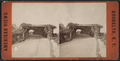Playground Arbor, Prospect Park, from Robert N. Dennis collection of stereoscopic views 2.png